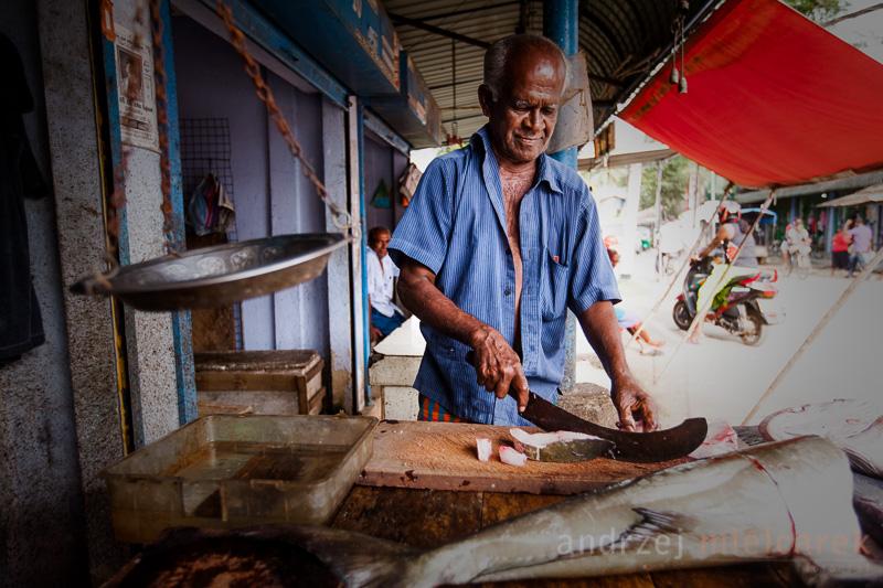 Targ rybny w Weligama
